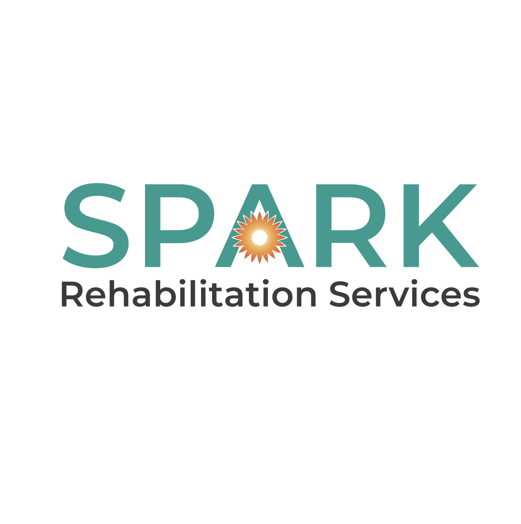 Spark Rehabilitation Services